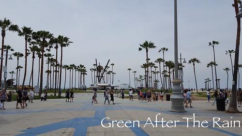 160610f Venice Beach _08