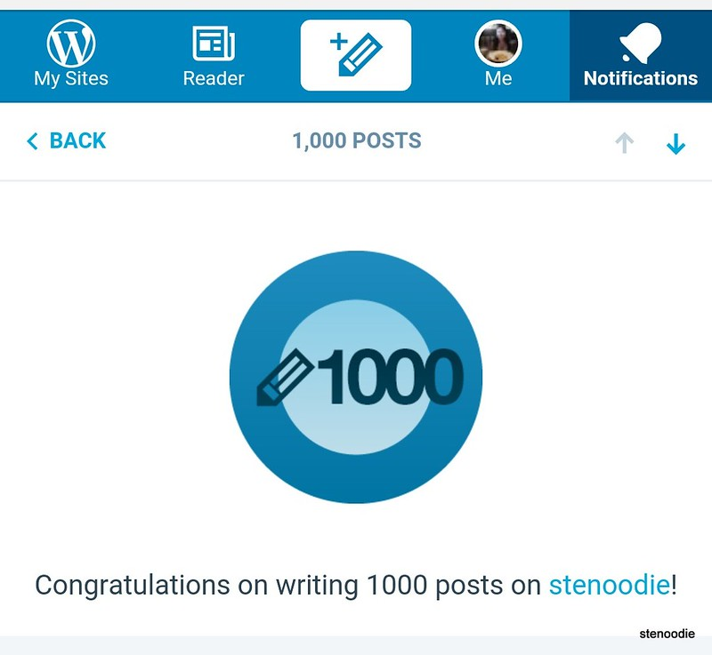 1,000 posts on stenoodie.com