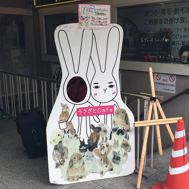 Usagito Cafe, Nagoya