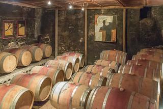 Barriquelager im Weinkeller Ansitz Waldgries