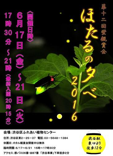 ほたるポスター2016