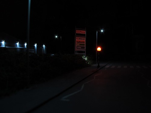 Along the road at night