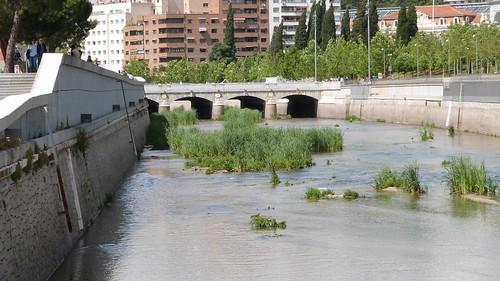 16-Madrid-0115