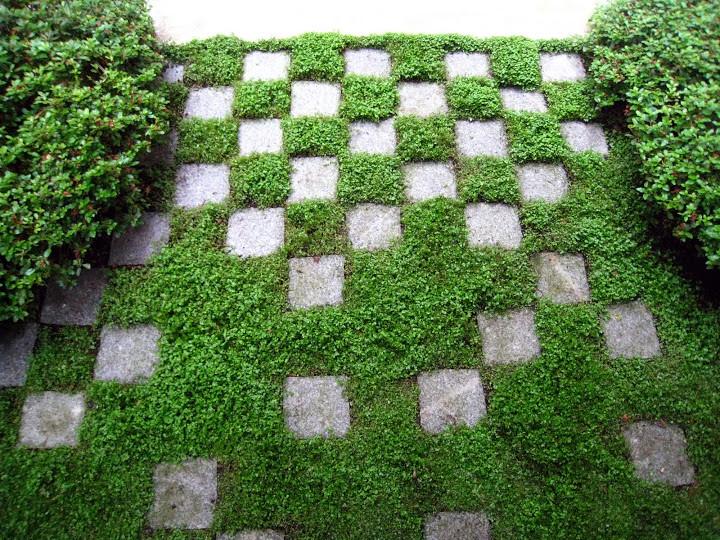 Jardin japonais en ville flickr for Plan jardin japonais