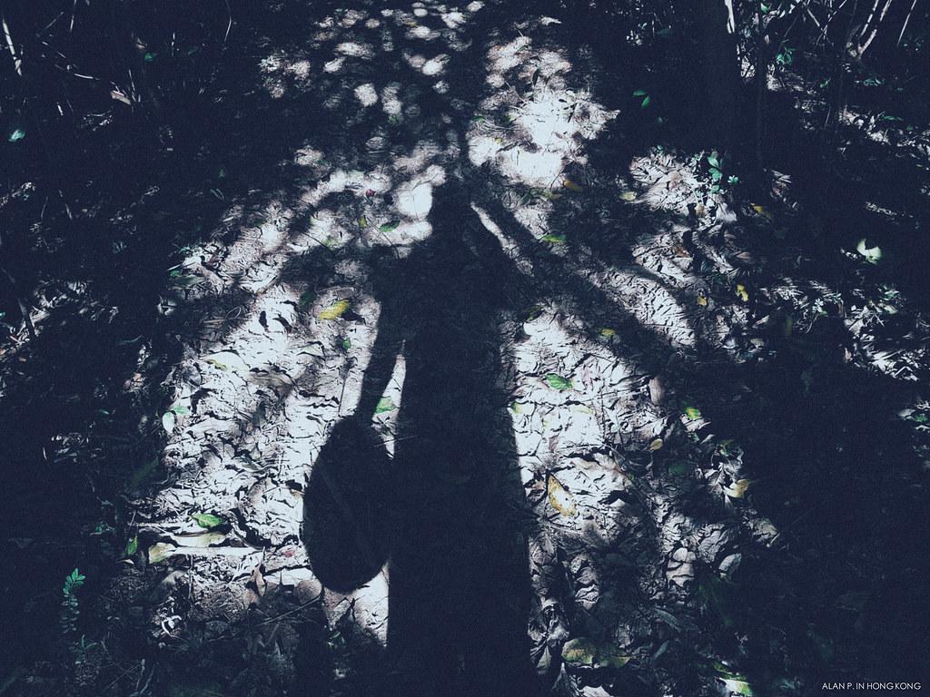 Shadowwalker