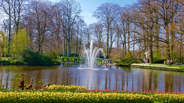 Spring bloom at Keukenhof gardens