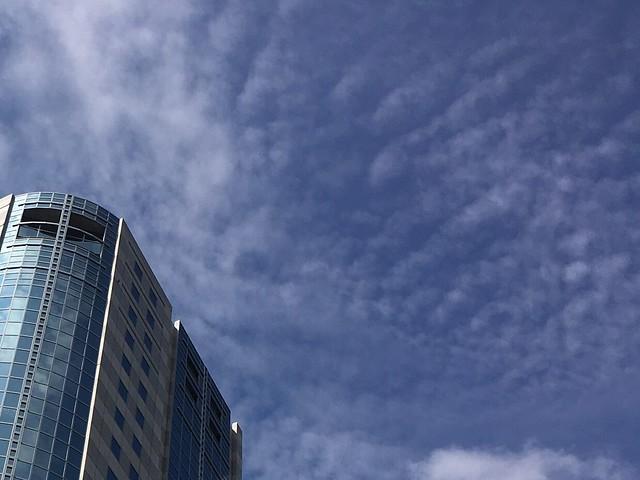 熬夜報稅隔天瞇著眼站在路口看上班日的晴朗天空