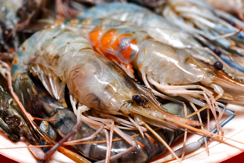 Fresh River Prawns