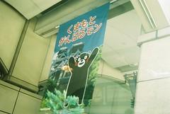 Tapestry at TSURUYA-Department Store(1606-1-000013)