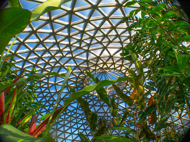Tropical Display Dome - Brisbane Botanic Gardens Mt Coot-tha