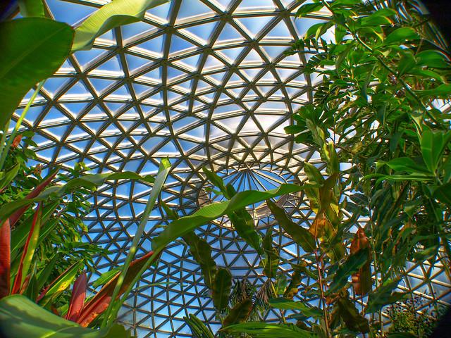 Tropical Display Dome - Brisbane Botanic Gardens Mt Coot-tha