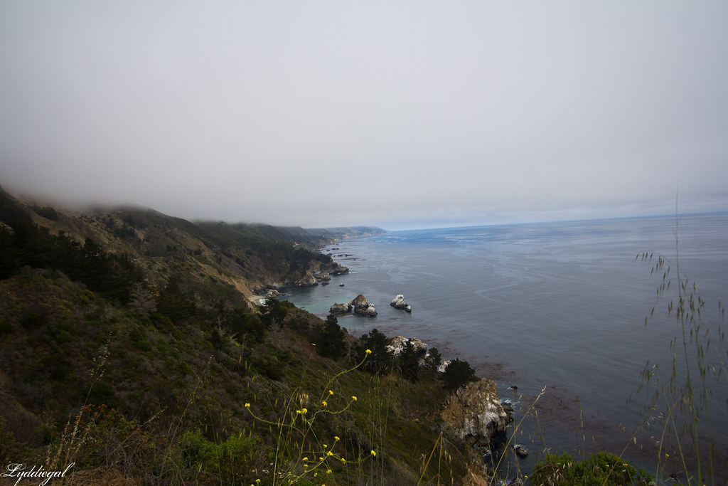 coast highway in big sur.jpg