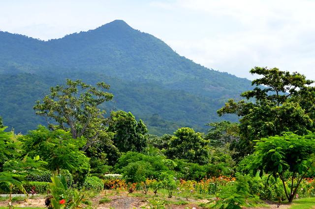 Hills of Honduras