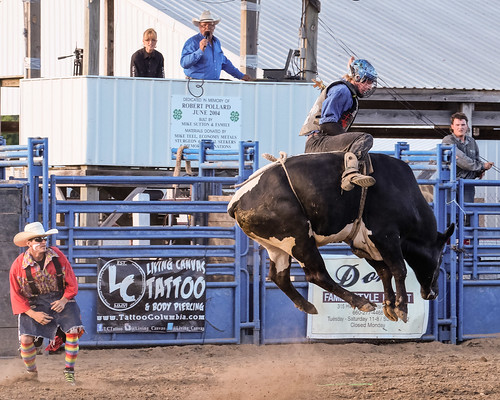 Rodeo 2016 - Bull riders 4