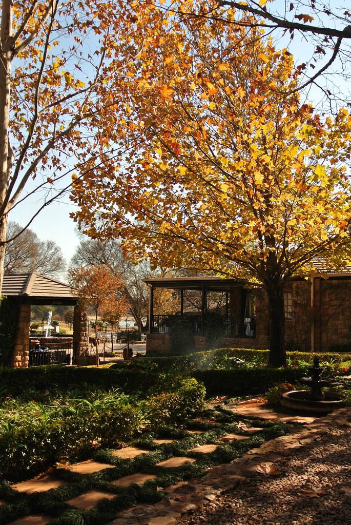 Autumn Pretoria