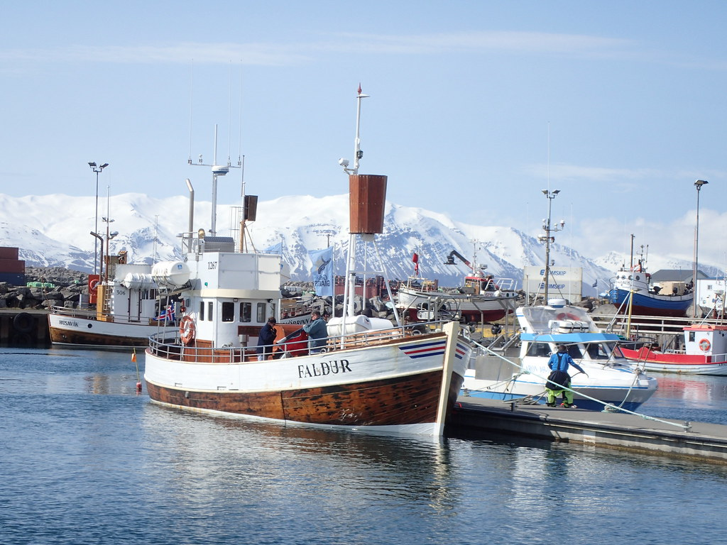 Gentle Giants whale watching boat. Iceland.