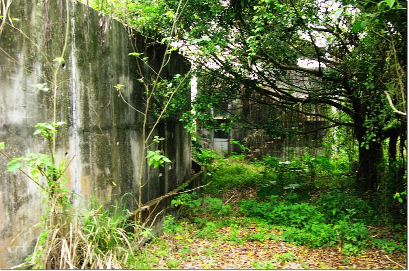埔姜林山登山步道建物 1