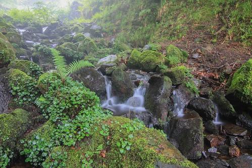 Parque Natural de #Gorbeia #Orozko #DePaseoConLarri #Flickr - -600