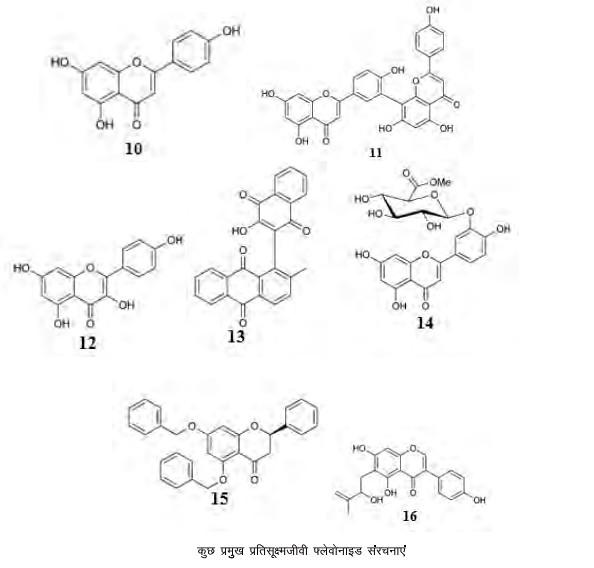कुछ प्रमुख प्रतिसूक्ष्मजीवी फ्लेवोनाइड संरचनाएं
