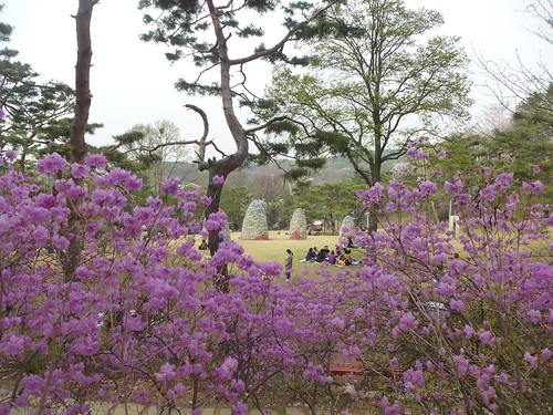 C16-Seoul-Grand Parc-Musee-Jardin-j4 (8)