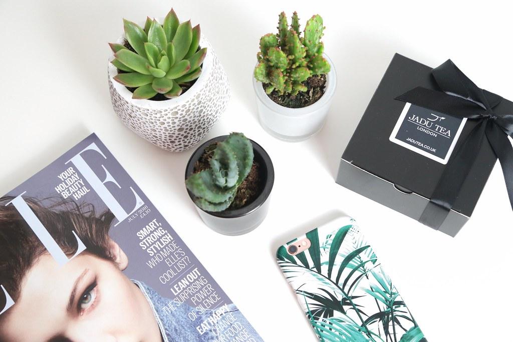 krystelcouture, jadutealondon, lifestyleblog, blogger, cactus, succulents,