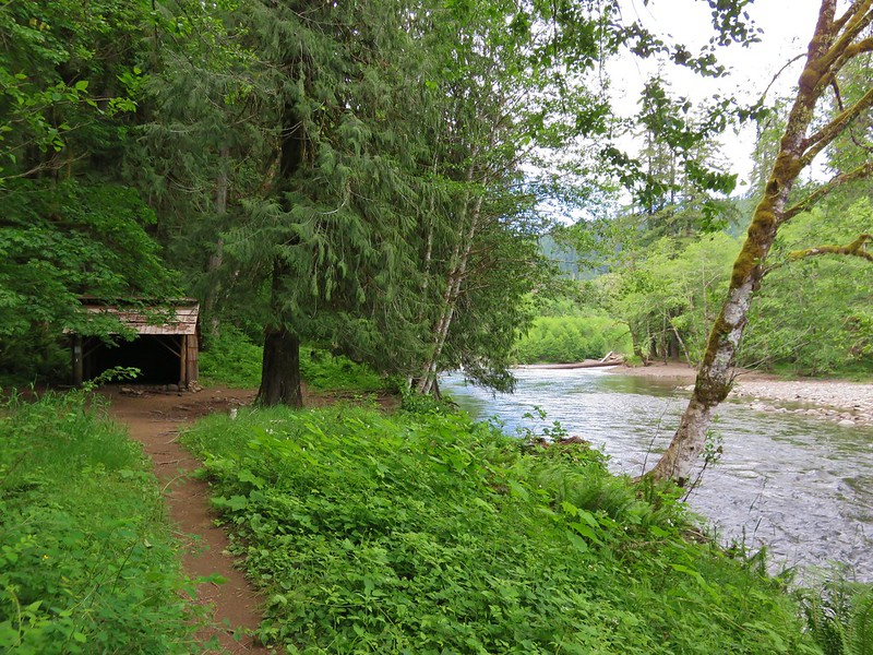 Bolt Camp Shelter along the Lewis River