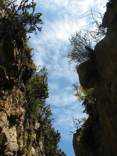 El acantilado y el cielo