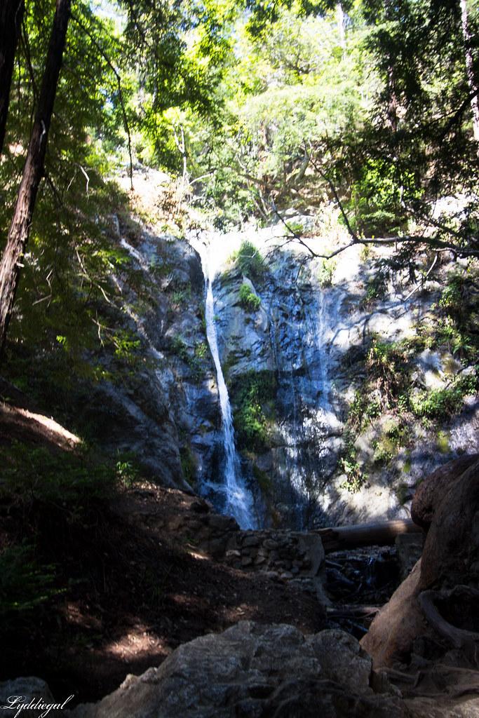 Pfeiffer Big Sur State Park-1.jpg