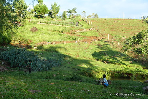 farm-tour-philippines.jpg