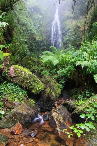 Parque Natural de #Gorbeia #Orozko #DePaseoConLarri #Flickr - -601