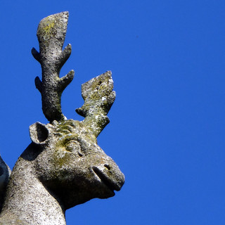 stone stag