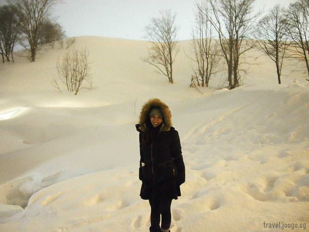 Niseko 3 - travel.joogo.sg