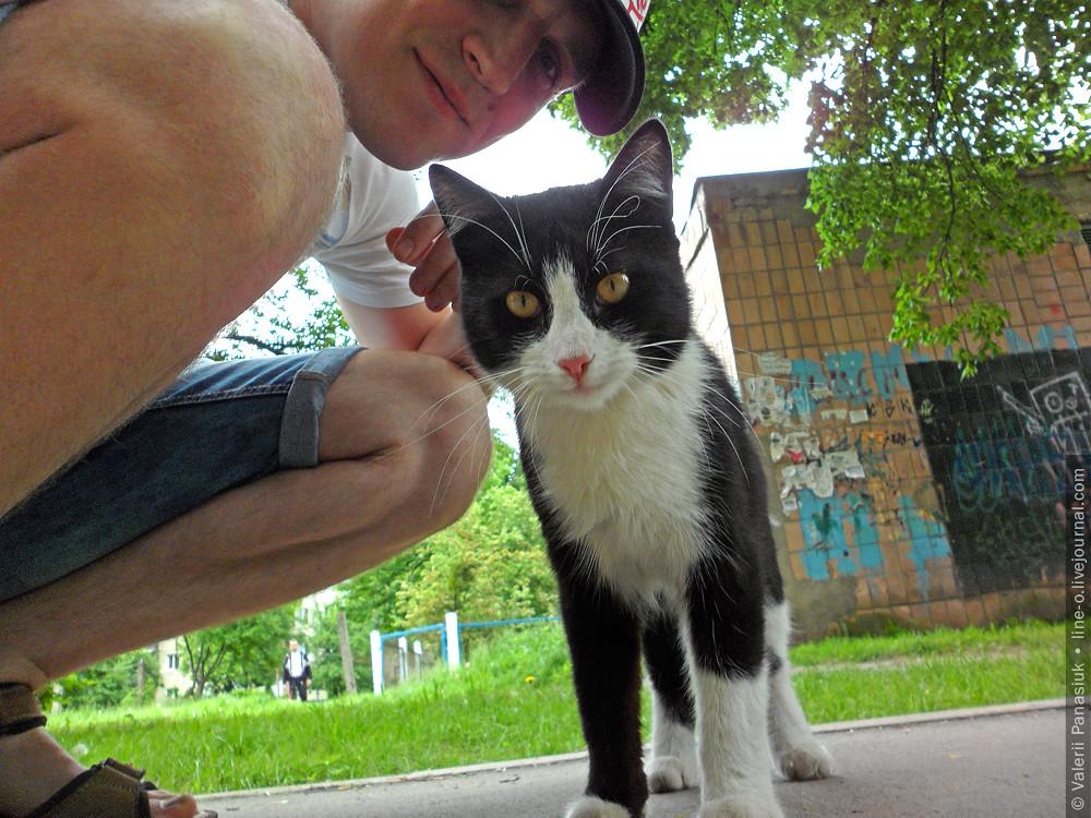 20160524_lutsk_cat_001