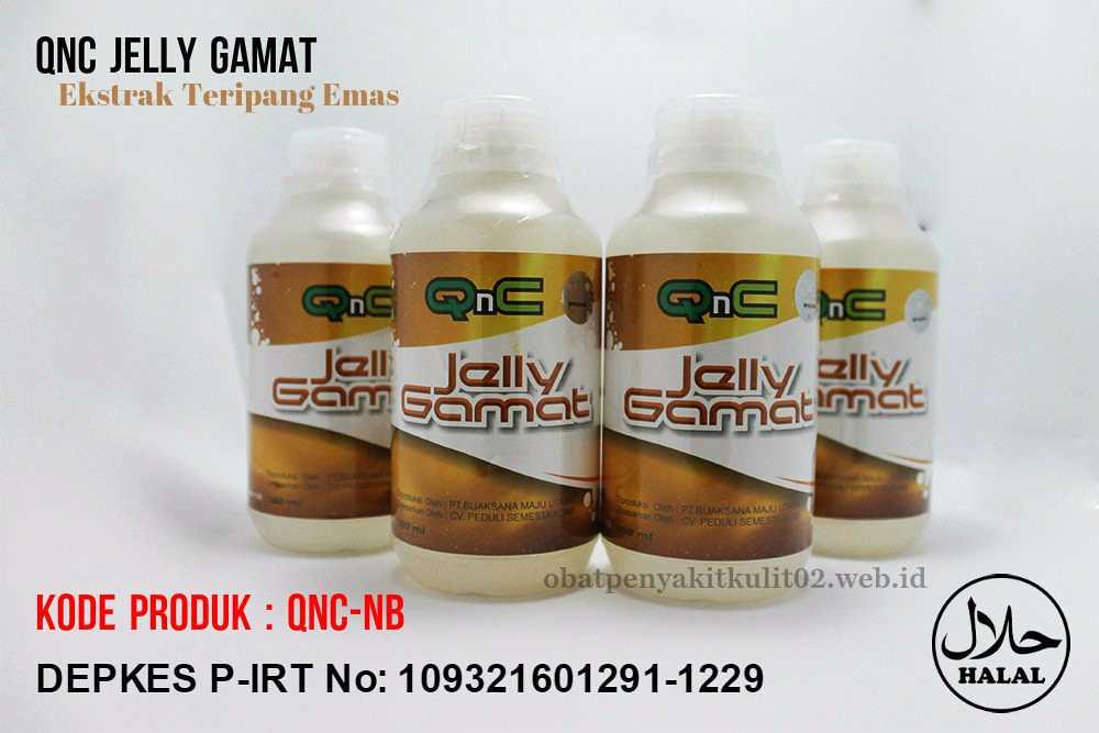 Proses Pembuatan Dan Packing Jelly Gamat QnC