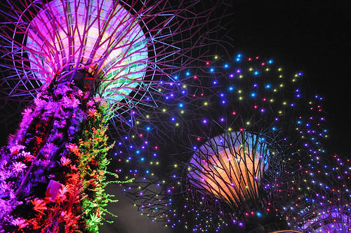 Singapore - Gardens by the Bay - Supertree Grove 6