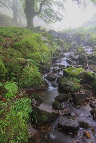 Parque Natural de #Gorbeia #Orozko #DePaseoConLarri #Flickr - -621