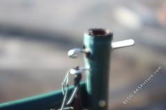 Ricoh Riconar 55mm f/2.2 (@ f/2.2)