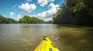Goat Island in the Broad River-164