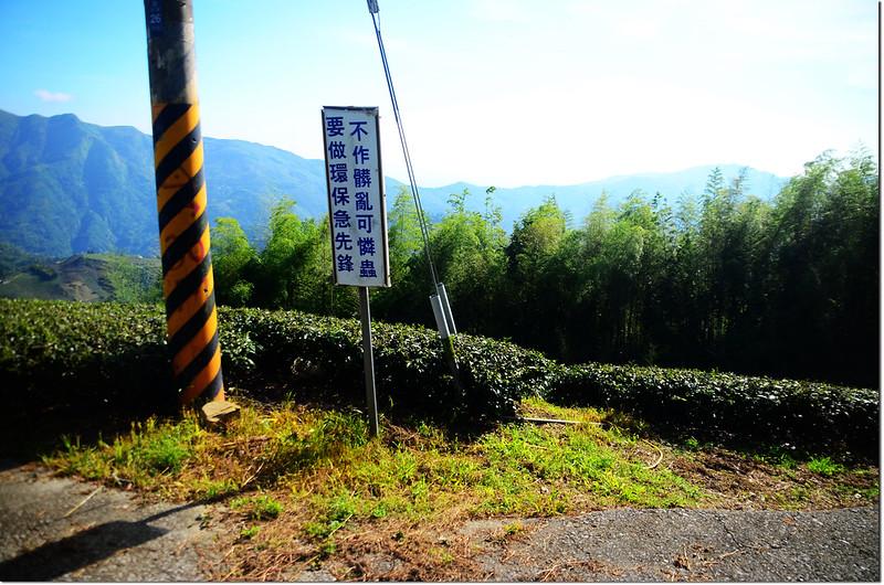 生毛樹山停車處