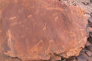 Petroglyphen der San mit Robbe und Giraffe