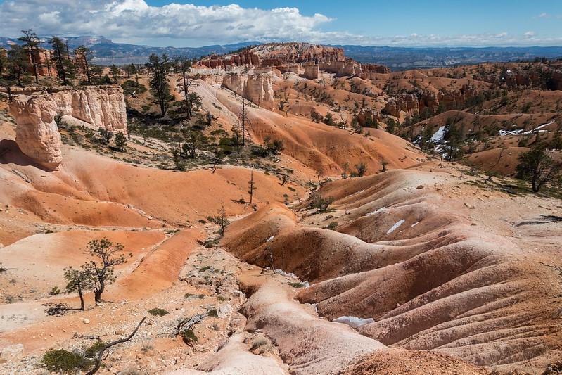 Bryce Canyon-00334 (2)