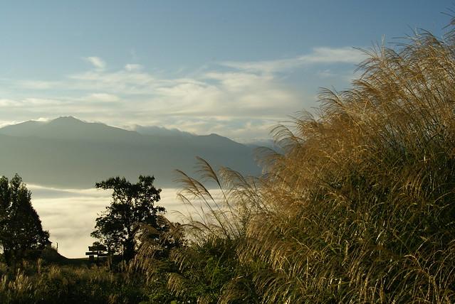 雲海とススキ_2011-09