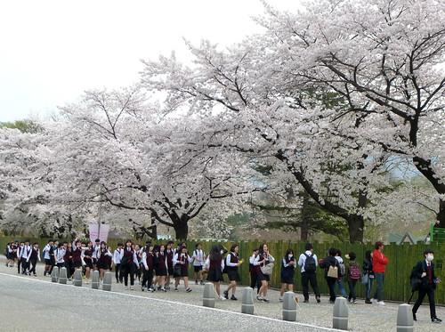 C16-Seoul-Grand Parc-j4 (11)