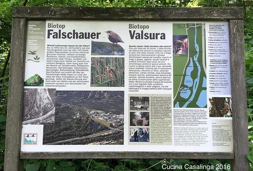 2016 05 Falschau 2