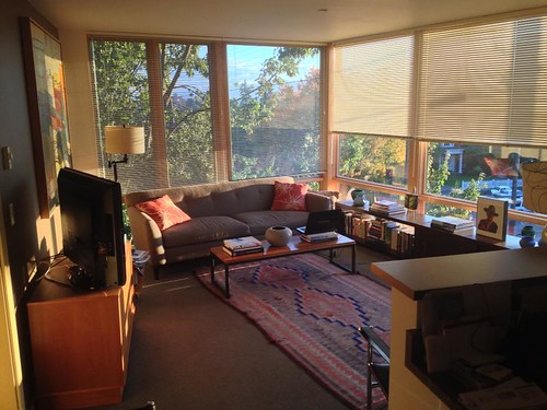 The Living Area Chloe Apartments Seattle Wa