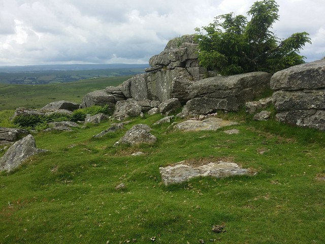 Nut Crackers, Dartmoor