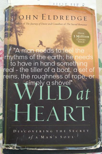 wild at heart by john eldredge