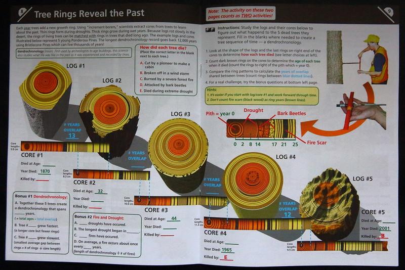 IMG_8040 Dendrochronology in Junior Ranger Activity Book