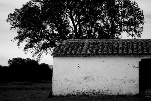 ADD XII. Casa de pastor II.