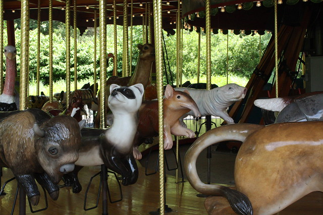 National Zoo Carousel
